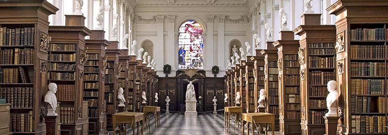 library_wren